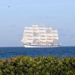 Le Royal Clipper (5 mâts) vu de la plage de Bequia