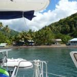 Le catamaran attaché aux arbres  derrières