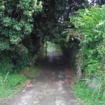 En route vers le centre naturel et biologique de Tonton Léon