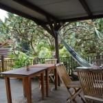 Magnifique terrasse en pleine jungle