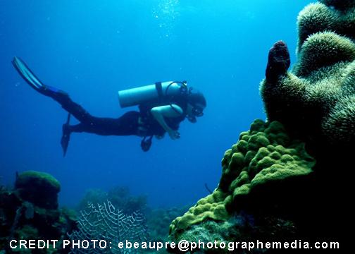 site de rencontre plongée sous marine)