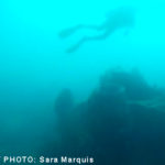 Photo_Dive4